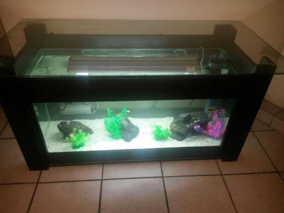 We build Aquariums to suit your pocket!