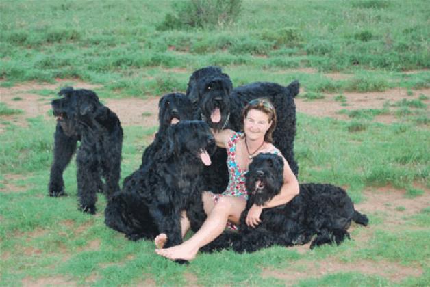 Chrisri Black Russian Terriers