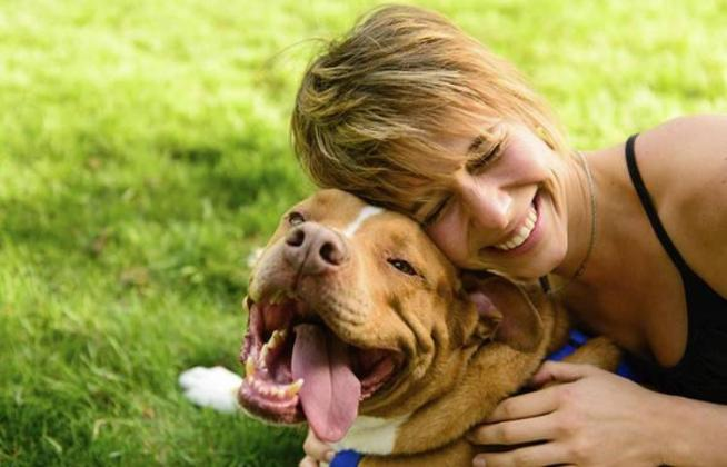 Dog ownership linked to lower mortality rate