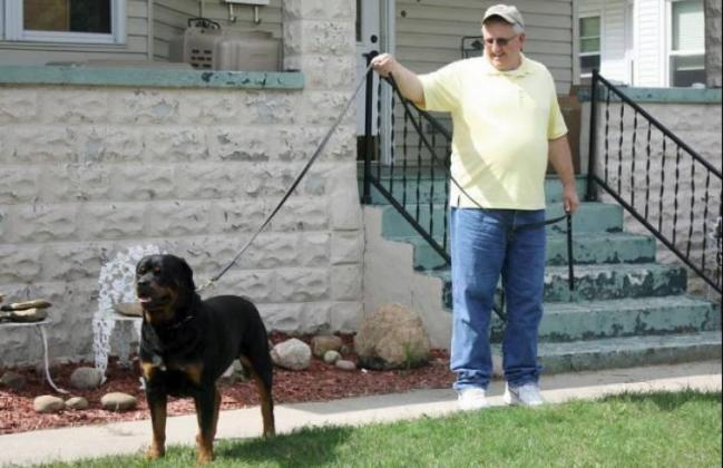 Rottweiler dog show taking place at Chautauqua USA