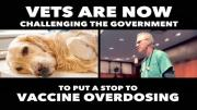 The Dangers of Vaccine Overdosing Pets