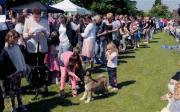 Charity dog show at Kirkland Memorial Hall