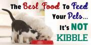 Chemicals in pet food can lead to bad behaviour